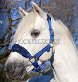 Horse Nylon Halter 01