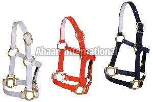 Horse PVC Halter 08