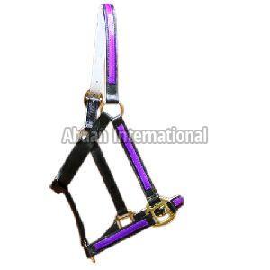 Horse PVC Halter 10