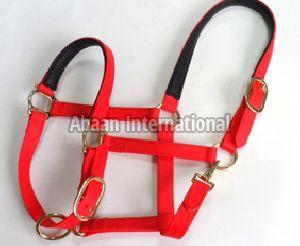 Horse PVC Halters