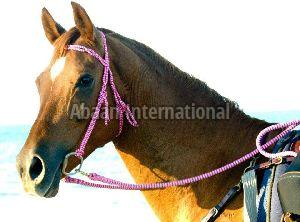 Horse Rope Bridle 06