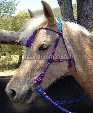 Horse Rope Bridle 07