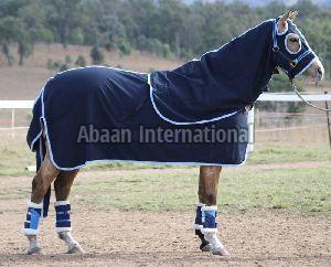 Horse Show Set Rug 03