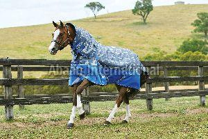 Horse Turnout Rug 02