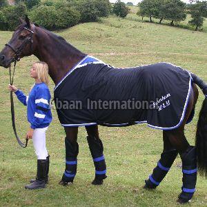 Horse Woolen Rug 09