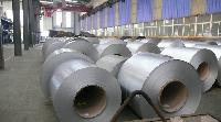 Galvanized Iron Coils & Sheets