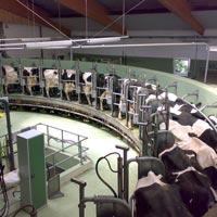 Dairy Farm Technologies
