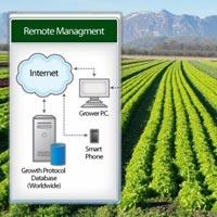 Smart Irrigation & Fertigation