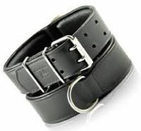 Dog Collar 05
