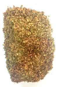 Gujarati Tobacco Patti