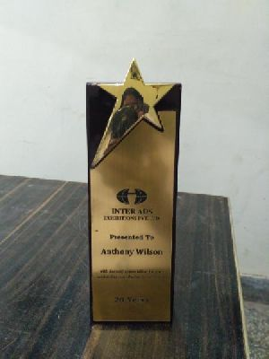 Wooden Star Trophy