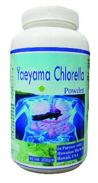 Hawaiian herbal yaeyama chlorella powder