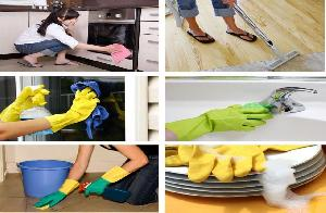 Hygiene Cleaning and Support Services