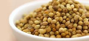 Brown Coriander Seeds 02