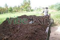 Cow Dung Manure