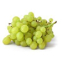 Fresh Grapes 01