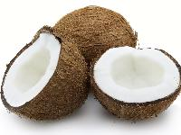 Fresh Coconut 03