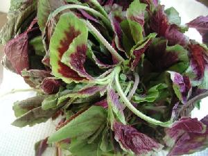 Fresh Amaranth Leaves (Mulaikeera)