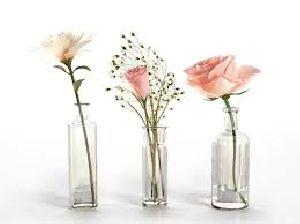 Glass Flower Vase