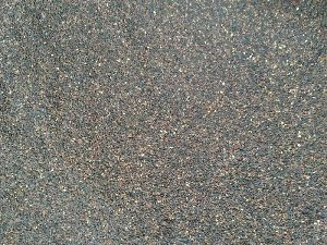 Sesame Seeds 02