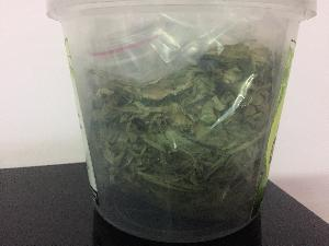 Dried Stevia Leaves 03