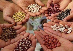 Natural Agro Seeds 01