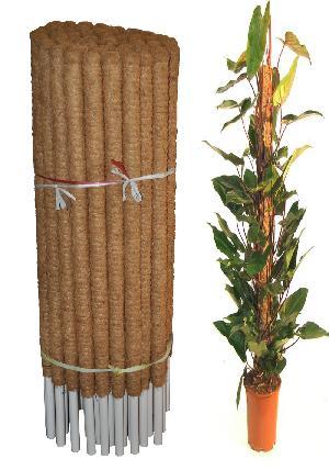 Coco Poles