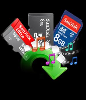 Sandisk Memory Cards