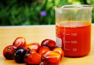Crude Palm Oil