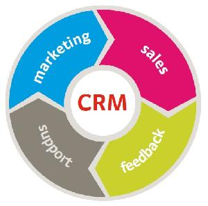 Dynamic CRM Services
