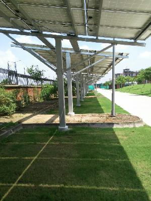 Solar Plant Structure Installation Services