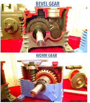 Bevel vs Worm Gear Box
