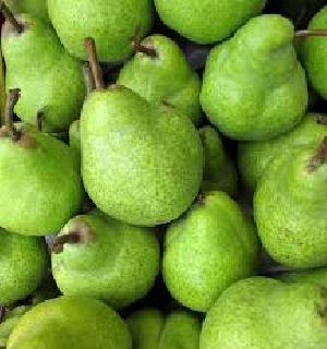 Fresh Pears