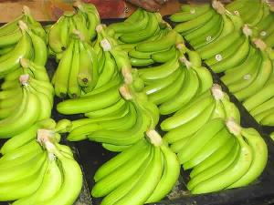 Fresh Cavendish Banana 02