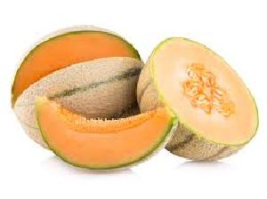 Fresh Muskmelon  03