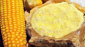 Maize Flour 01