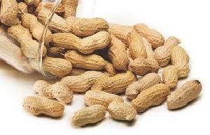 Shelled Peanuts 01