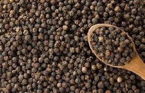 Black Pepper 04