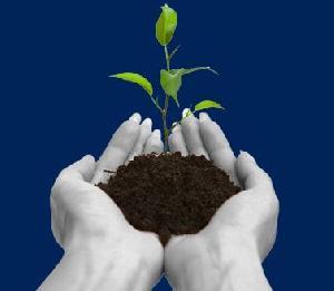 Industrial Fertilizers