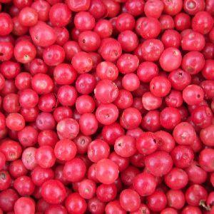 Pink Pepper