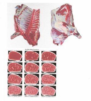 Australian Beef Meat 03