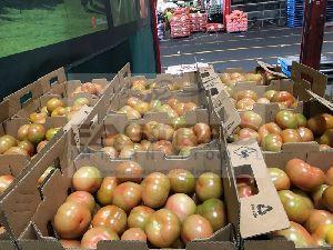 Fresh Tomato 07