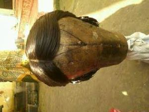 Hair Wig 11