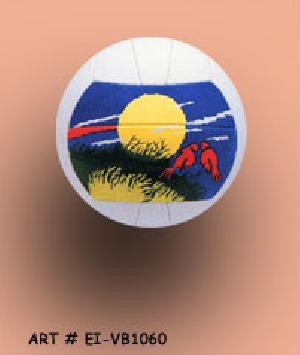 Volleyball (EI-VB1060)