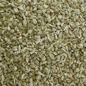 Natural Ajwain Essential Oil