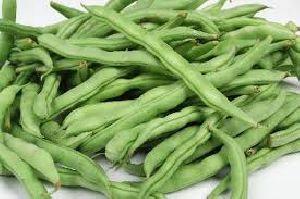 Fresh Lima Beans 01