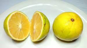 Fresh Sweet Lemon 02