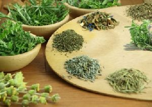 Botanical Herbs