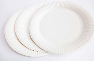 Paper Plate 06