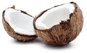 Fresh Coconut 01